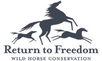 rtf-logo-transparency2.png