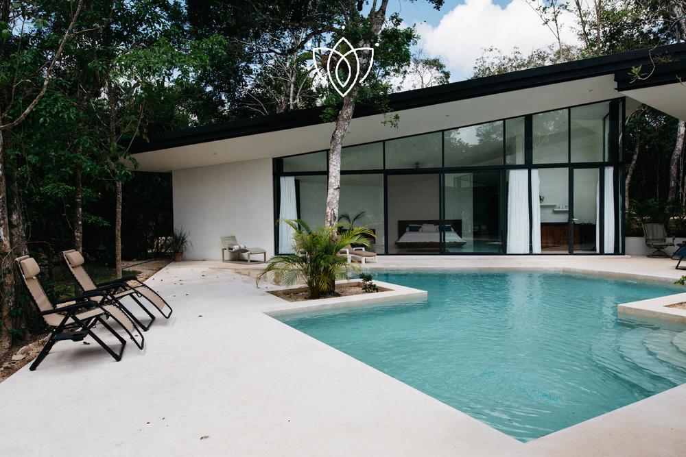 Xpu Ha casa selva    view property