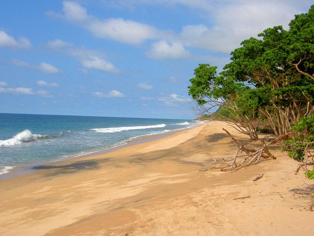 malpasos_beach.jpg