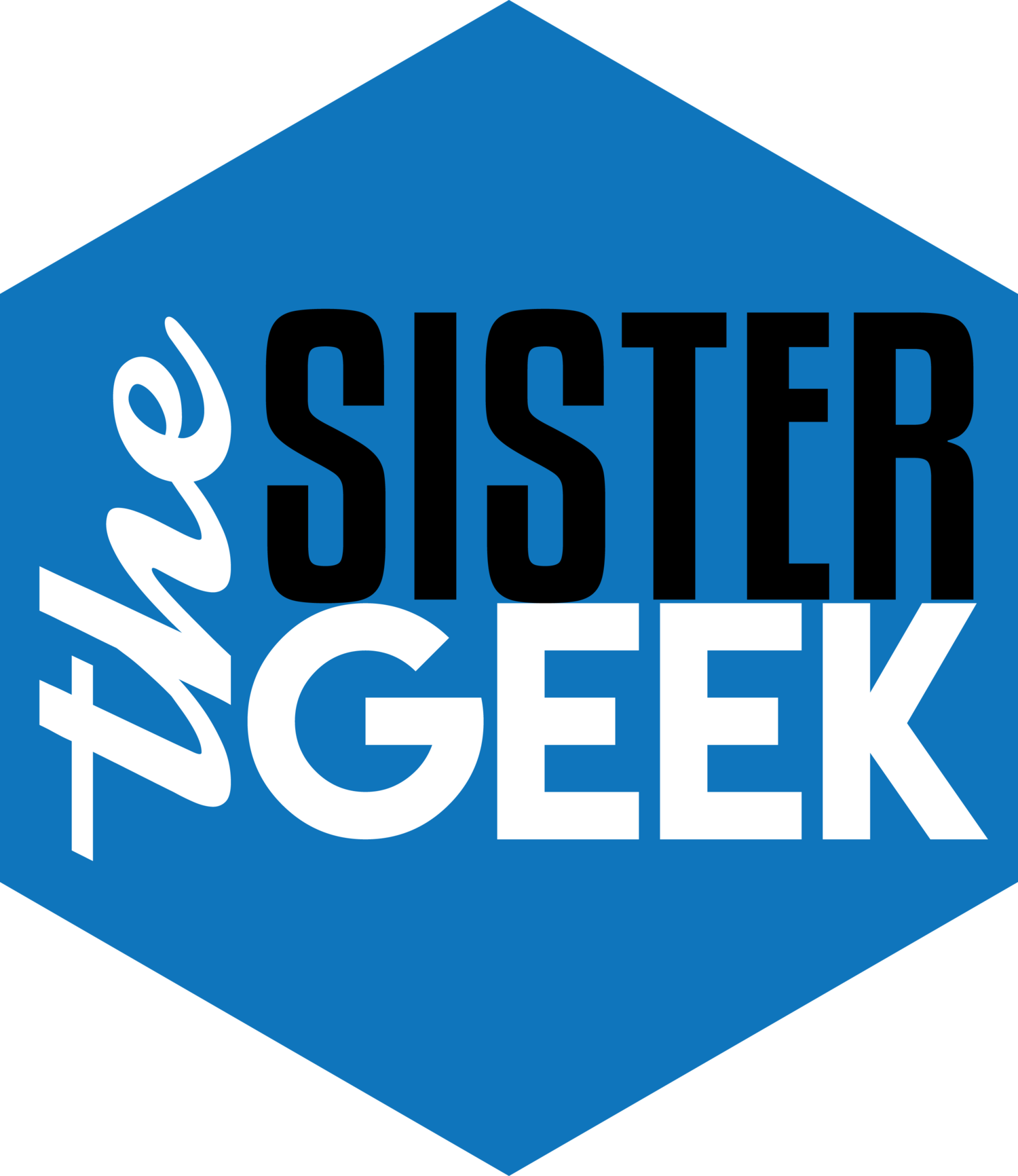 theSisterGeek Consulting