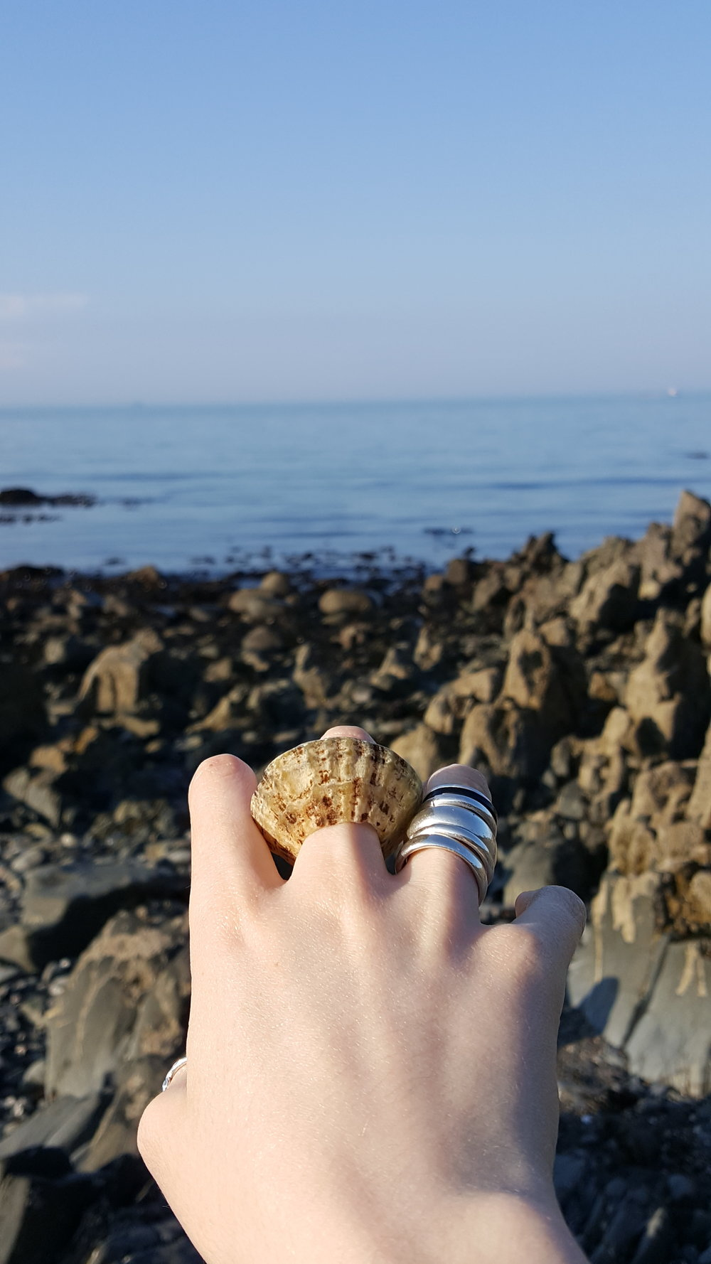 Tuning the tide inspiration .jpg