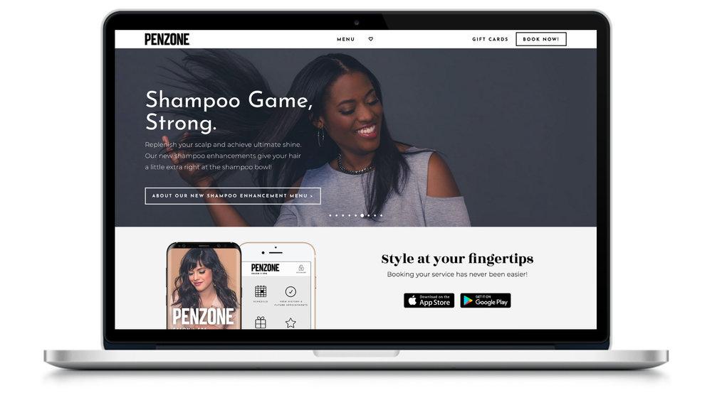 Penzone Website.jpg