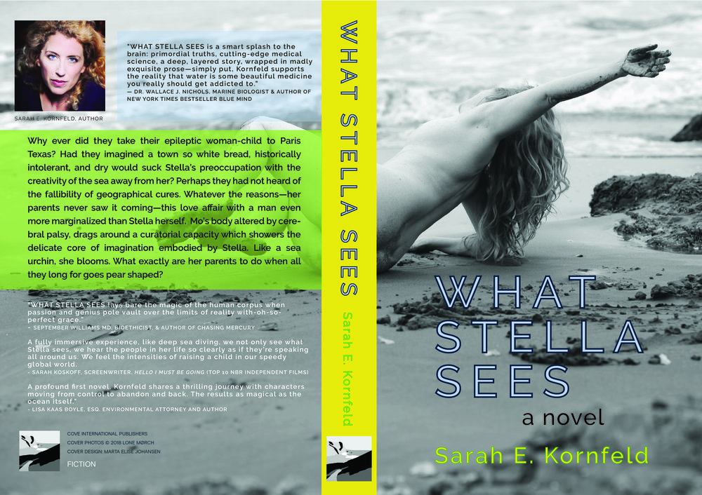 WHAT STELLA SEES BOOKCOVER AMAZON-01.jpg