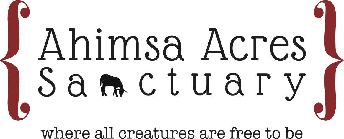 Ahimsa Acres Sanctuary