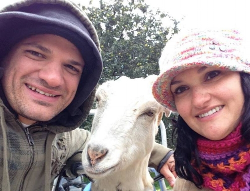 Anthony, Dorothy and Jena. Meeting Dorothy at Farm Sanctuary was inspirational to Jena and Anthony in putting plans into place to open their own sanctuary for farm animals.