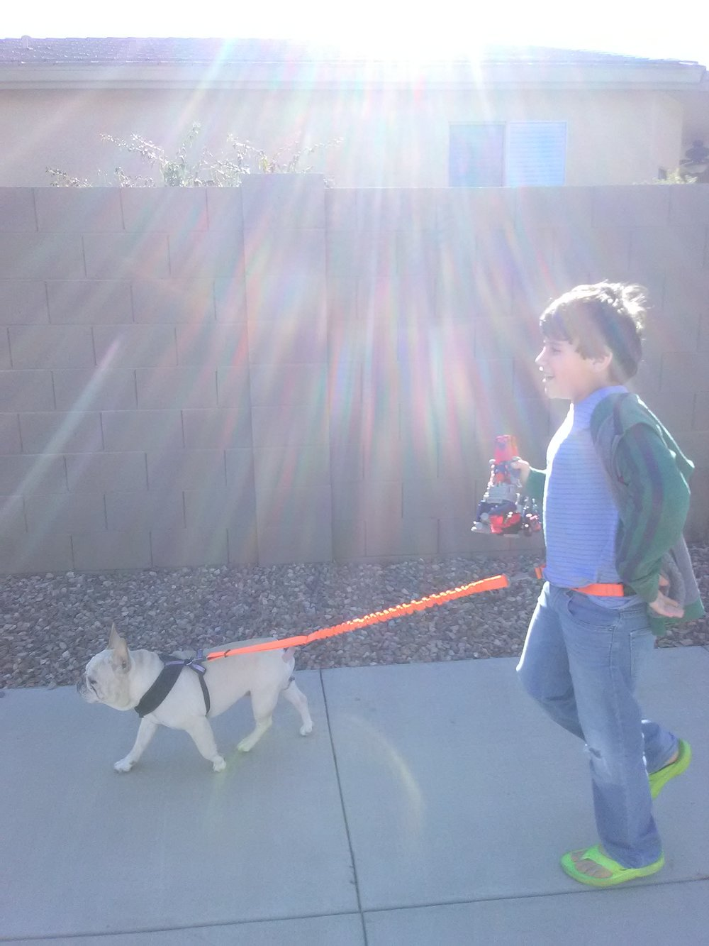 Consider the Stunt Runner if your kids are begging to walk the dog but need the confidence to do it.