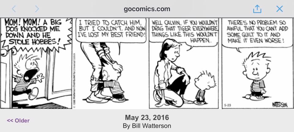 Calvin and Hobbes by Bill Watterson, 23 May 2016, via @GoComics