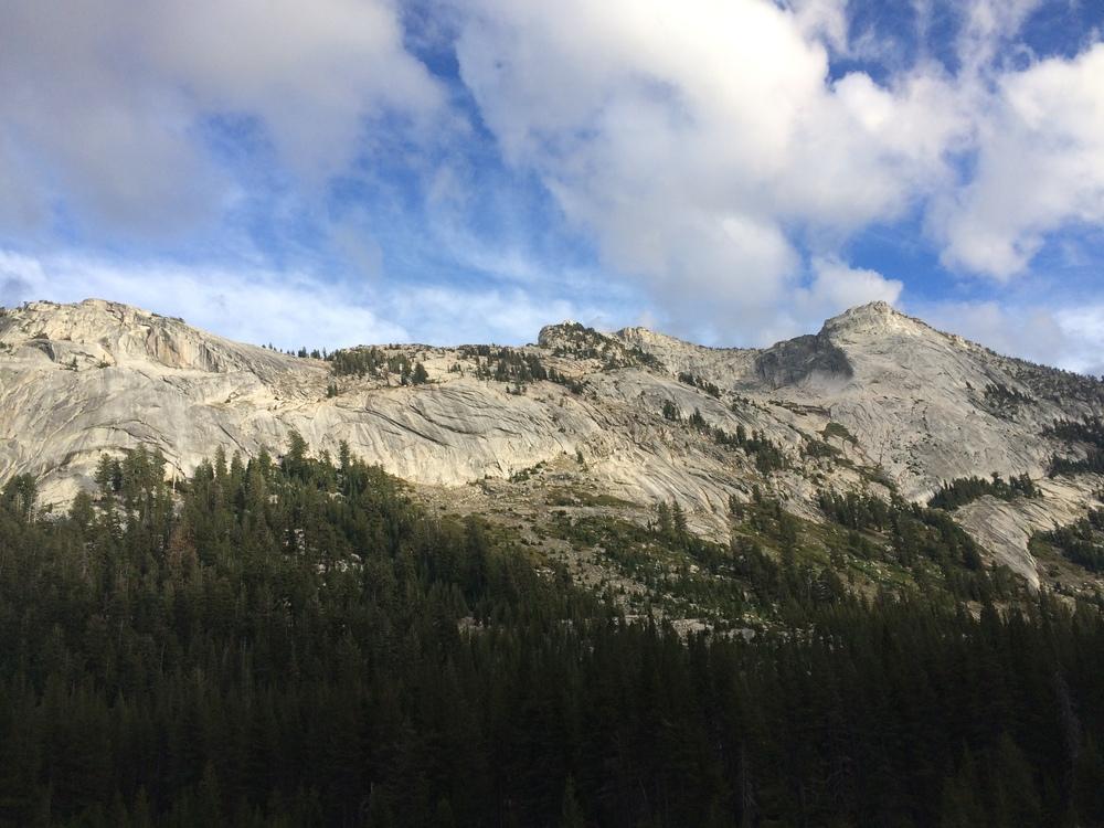 Sierra Nevada ©DiCarlo 2015
