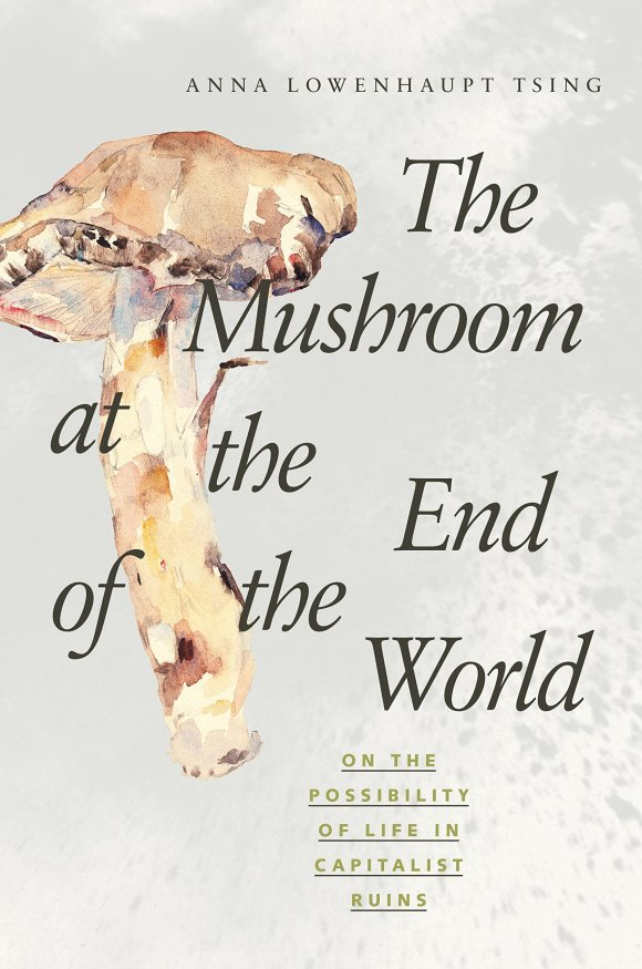 anna_tsing_mushroom_at_the_end_of_the_world.jpg