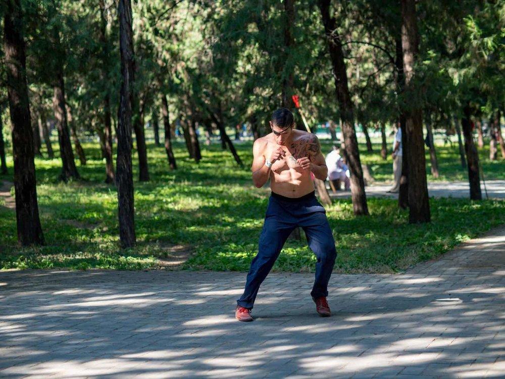 Flying Tortoise Joey Haber Sanda Beijing.jpg