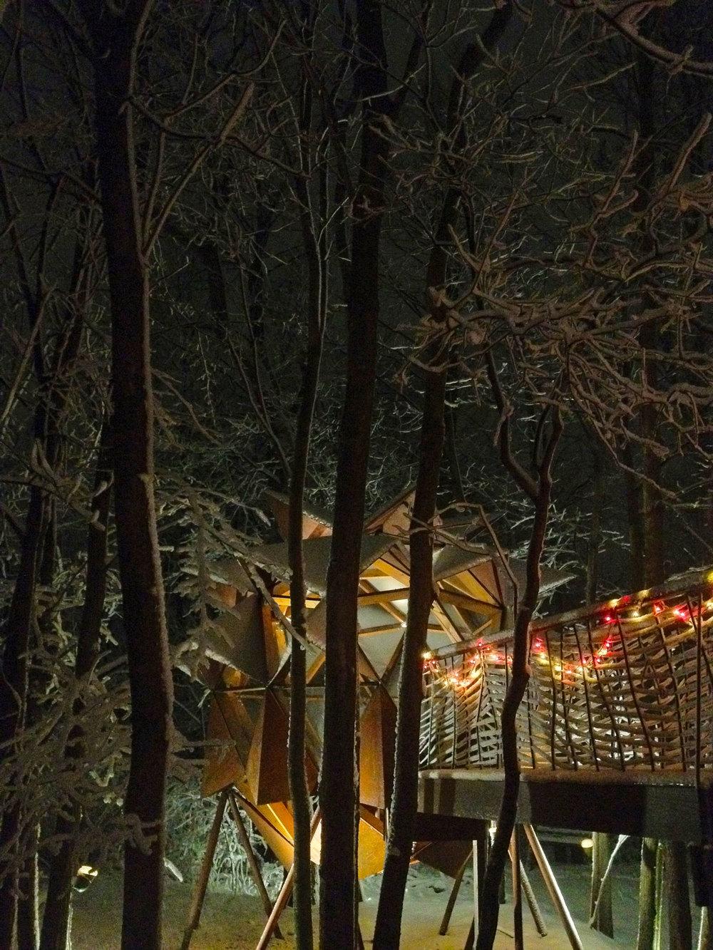 CopperNest-WinterNightVert.jpg