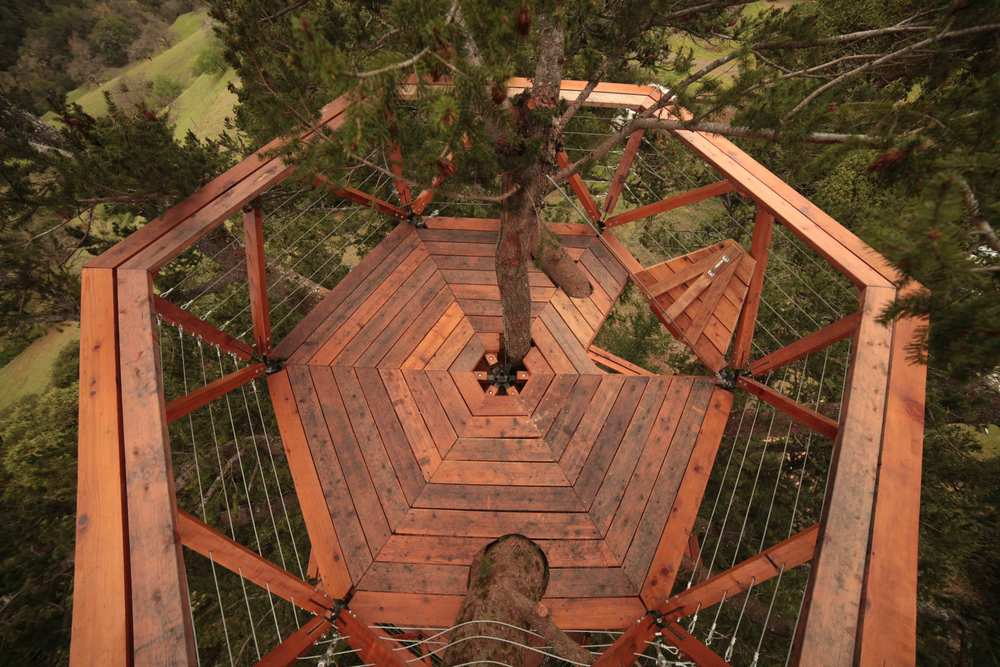 o2treehouse_geyserville_image_173.jpg