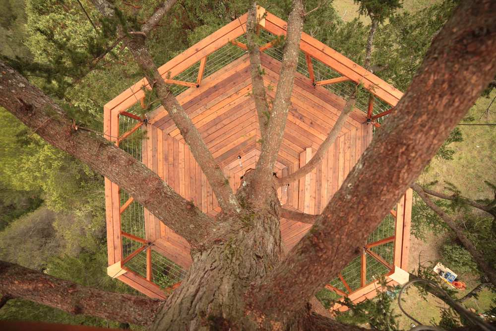 o2treehouse_geyserville_image_179.jpg