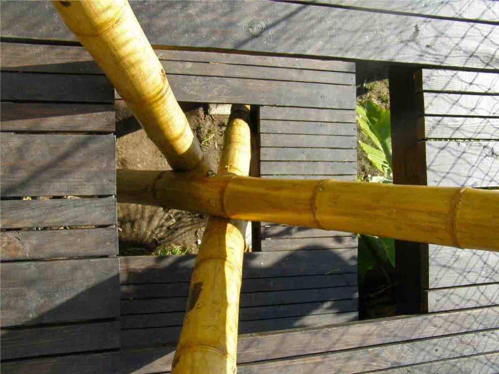 BambooPlay-TopDown.jpg
