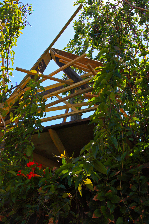 TreeTower-Garden.jpg