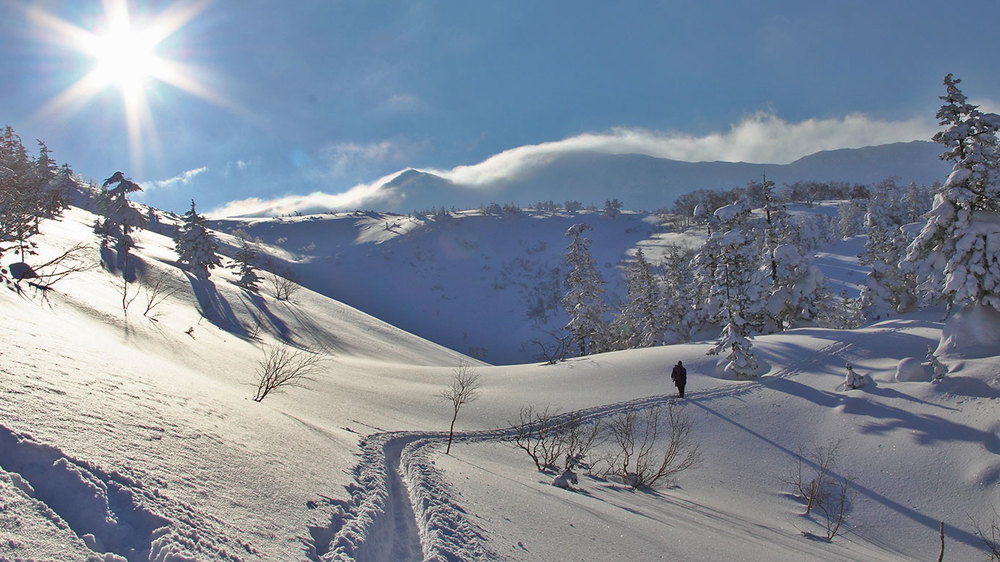 Backcountry Skiing Tokachi climb.