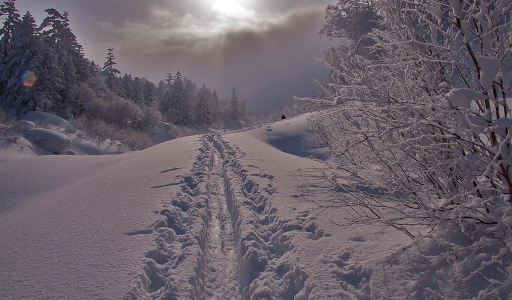 Backcountry ski Tokachi Mountains Japan.