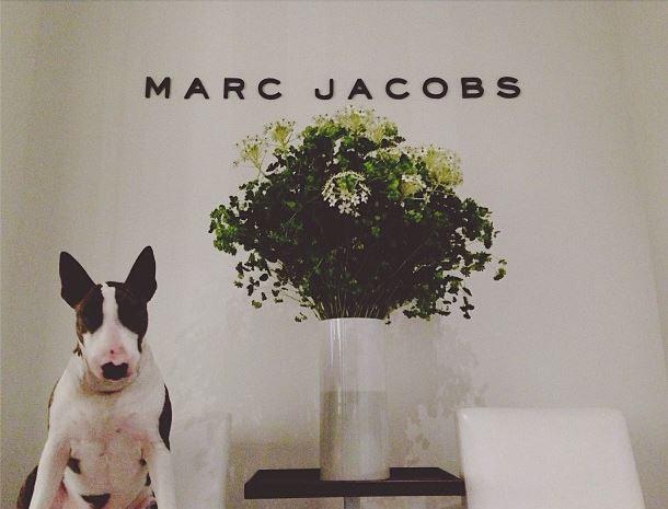Neville_Marc_Jacobs.JPG
