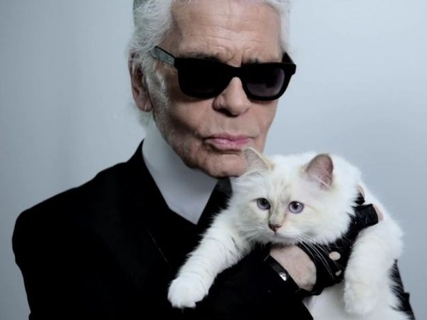 Karl-Lagerfeld-Katze-Twitter.jpg