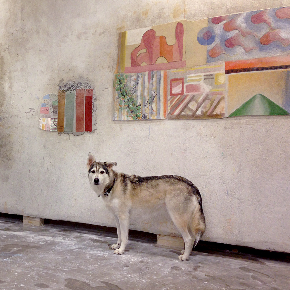Hund_HiRes.jpg