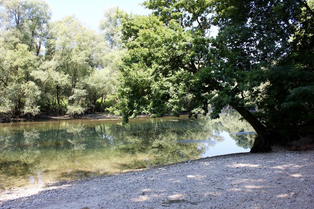 Parco Ticino