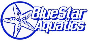 blue star logo.jpg