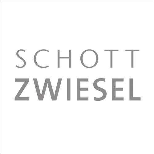 Schott Logo_.jpg