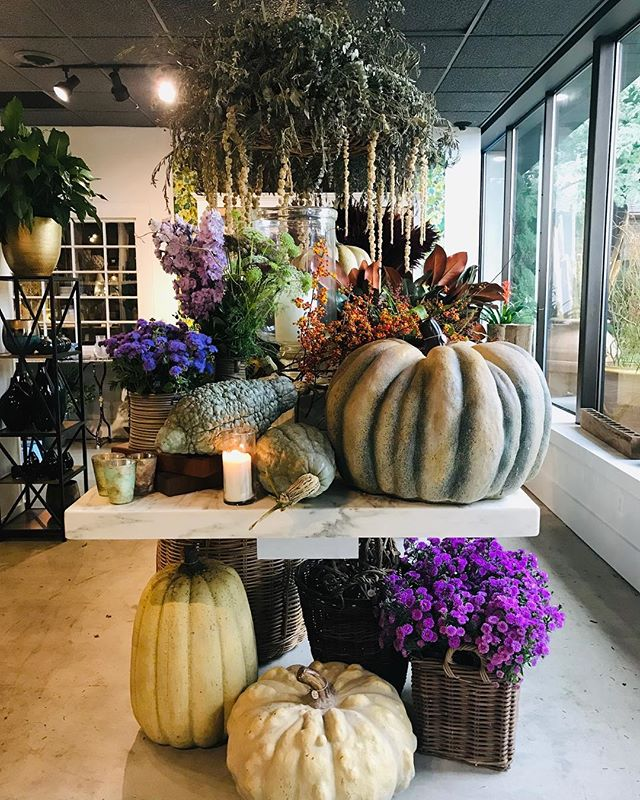 Wonderful Sat afternoon @fleurdetroit Autumn party. The festive florals and garden creations are always so inspiring and creative masterpieces. The event included a petting zoo, metallic pumpkin painting, food truck, face painting and so much more. Bravo to Phillip and Joe😘!#saturdayafternoon #gardens #autumn #fallflorals #pumpkins#fallfun #fallgardens #gardendesign #stylebloggers #fashionblogger #weekendvibes #autumnafternoon #gardenshops