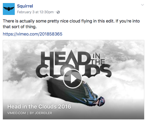 Squirrel FB – Head in the Clouds by Joe Ridler