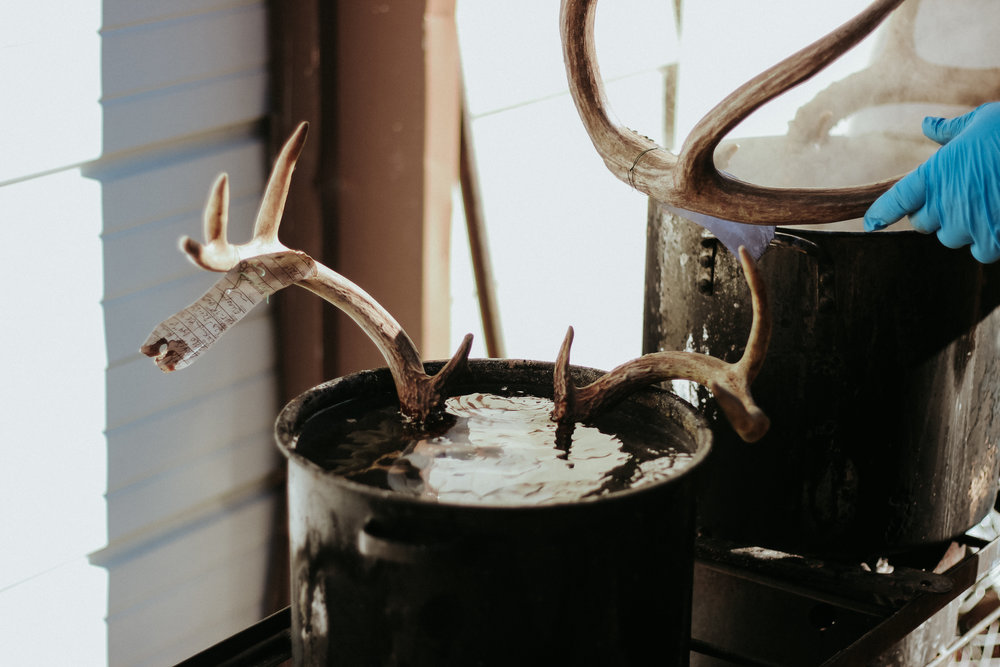 A pair of skulls boiling outside the workshop.