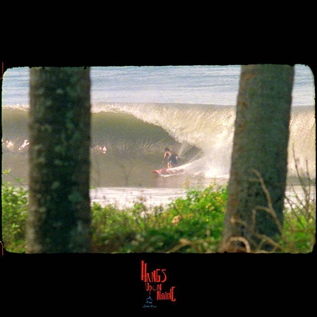 Peace  @mikalajones between trees  #surf #film #hangsuponnothing