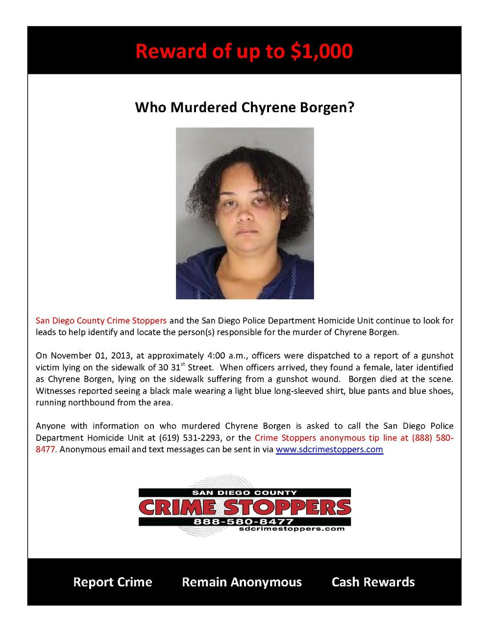 Who Murdered Chyrene Borgen_1