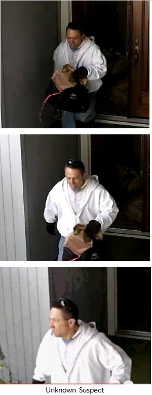 rancho bernardo burglary suspect