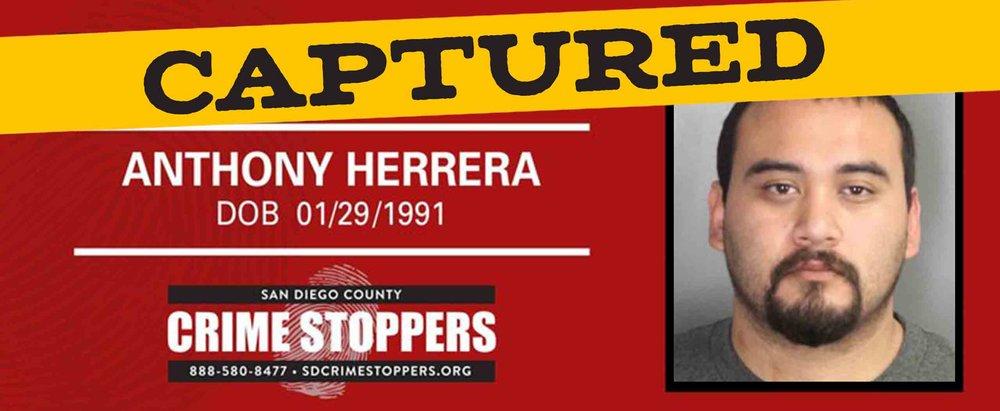 Anthony-Herrera.jpg