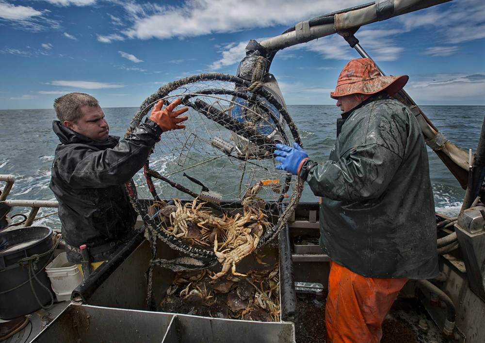 Chinook Port: Dungeness Crab Fishing