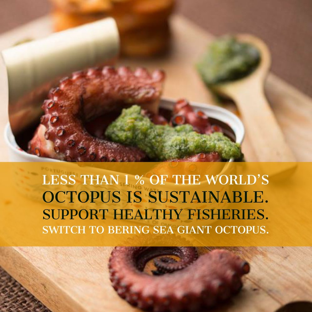 Support Sustainable Fishing: Only Buy Bering Sea Giant Octopus