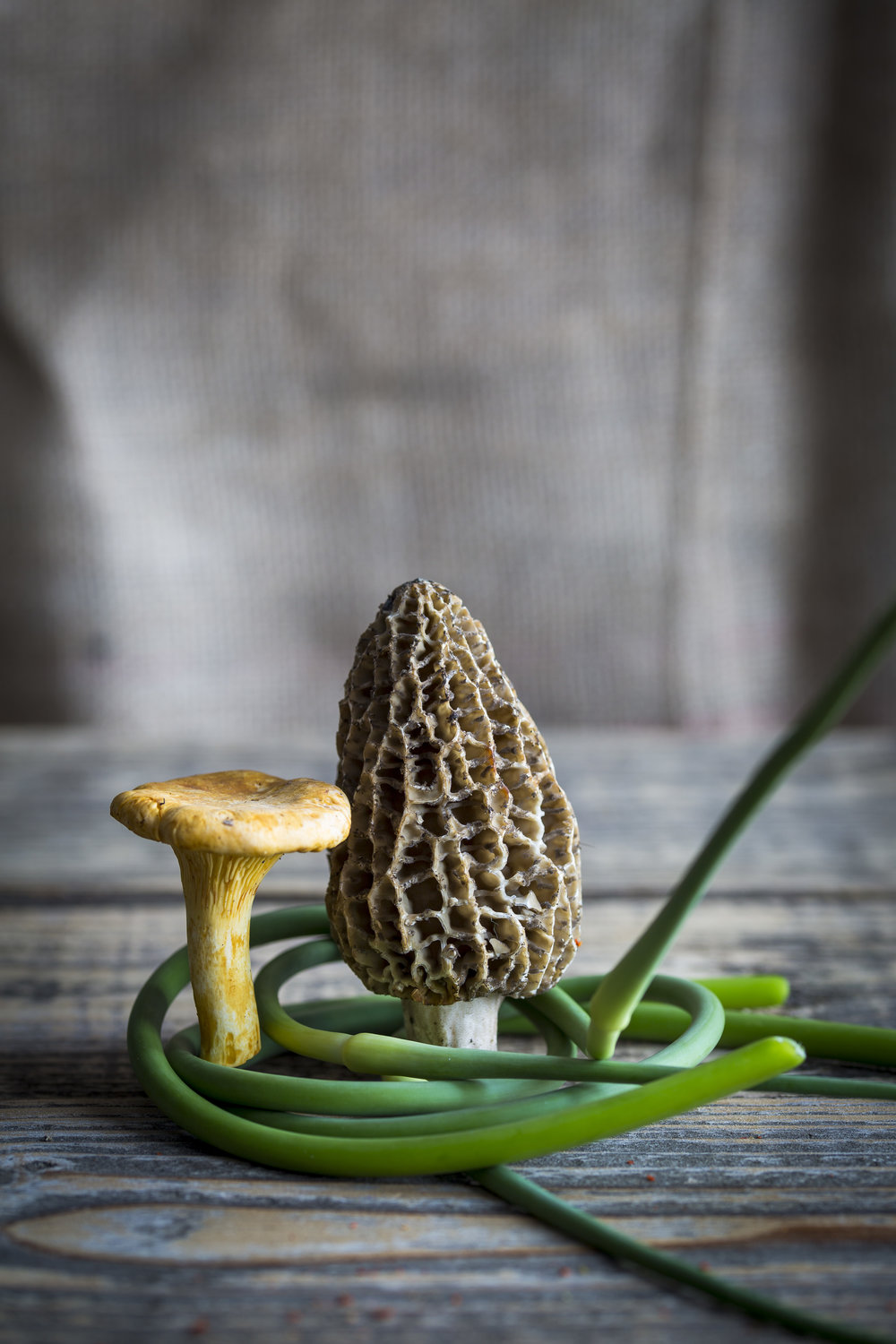 Morels and Chanterelles (and garlic scapes)