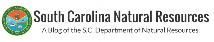 South Carolina Natural Resources