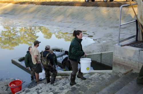 Crew members carry the buckets to the top of the dam by hand.