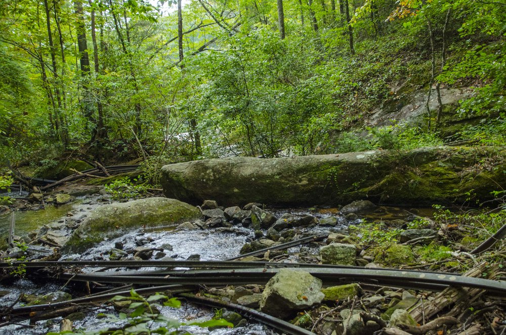 Reedy Cove Falls for Blog by DLucas_7.JPG