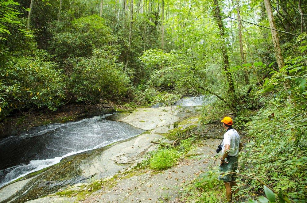 Reedy Cove Falls for Blog by DLucas_12.JPG