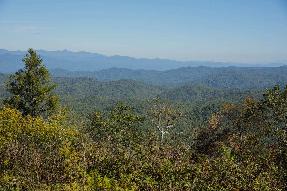 Sassafras Mountain is the highest peak in South Carolina.   (SCDNR photo by Taylor Main)