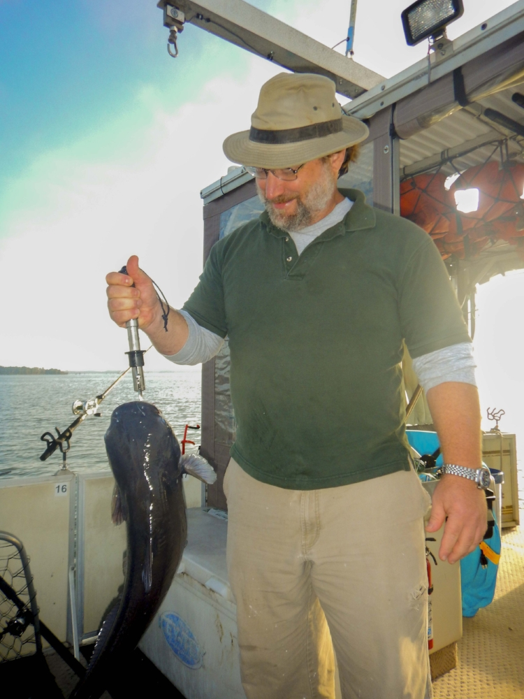Lake Marion is well known for its population of catchable (and tasty) blue catfish.
