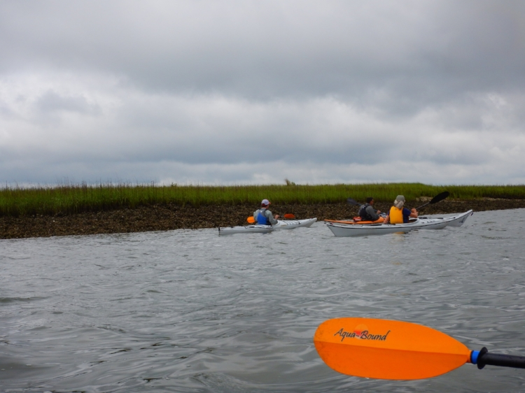 Beaufort- Harbor R Kayak May 2016_DLucas_006.JPG