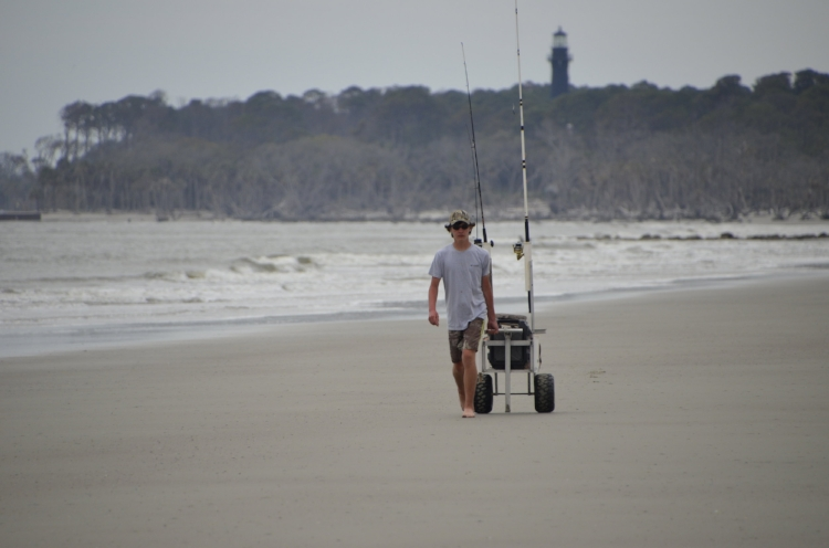 Above: A teenager pulls his well-stocked surf-fishing cart towards the northern tip of Hunting Island State Park, where the Harbor River meets the ocean.  Below (clockwise from upper left):  A vacationing teen tries his luck at Hunting Island;  You can't see it, but this angler is point out a dolphin swimming offshore, a good sign that baitfish (and the larger fish that follow them) are in the area; Anglers share the beach at Hunting Island with bicyclers, sunbathers and joggers -- it's a fun place to be in the summer in Beaufort, but the fall fishing is great also!