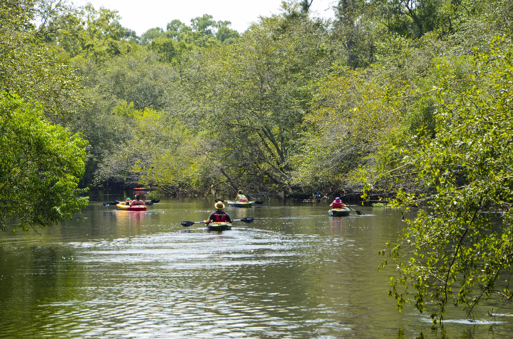 Paddlers headed downstream from Chris Anderson Landing. [Note: The SCDNR strongly urges all boaters to wear an approved PDF at all times while on the water.]