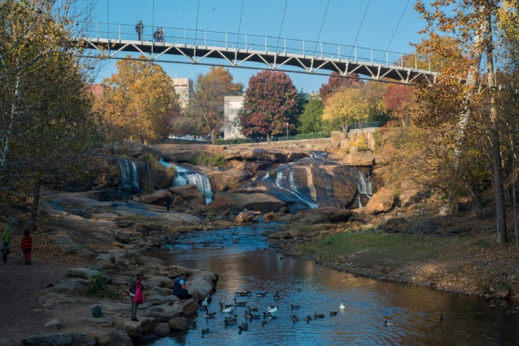 Healthy rivers help build healthy economies! Now local and regional economic development officials point to the River and the pedestrian bridge spanning it as a focal point for a revived and booming downtown Greenville.