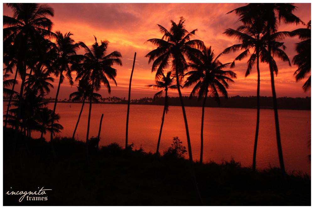 Kerala-Scenary.jpg