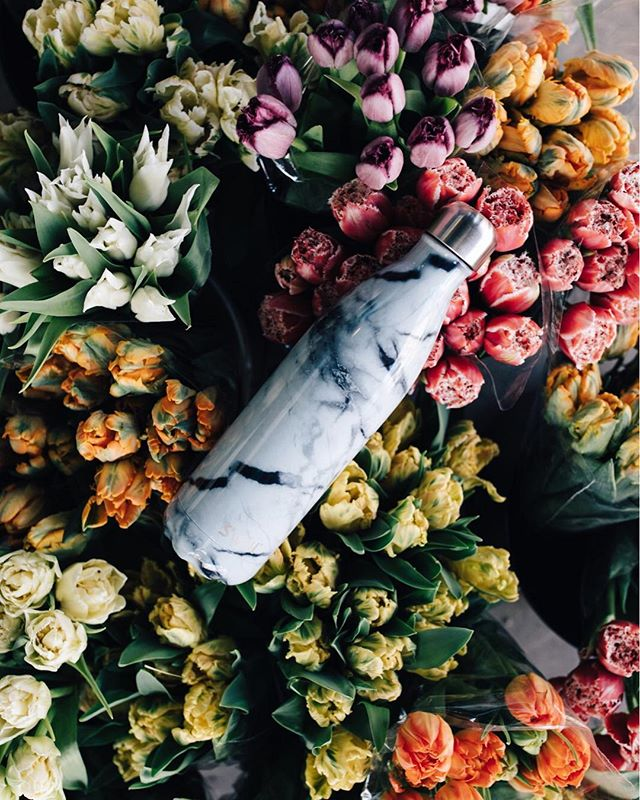 ✨ g i v e a w a y ✨  happy earth day! i'm excited to partner with @swellbottle to give away this lovely water bottle to celebrate & help reduce the use of plastic bottles. just simply comment below for a chance to win, i'll be drawing the winner tomorrow at 5pm CST 🌎  i believe the little changes we all make in our daily lives can all add up in a big way to help reduce our impact on the planet. i carry my own swell bottle just about everywhere with me. together we can help keep this beautiful earth we're so lucky to call home free from unnecessary waste 💛  #ReduceTheUse