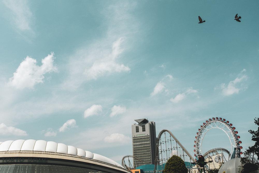 Tokyo - Circus - Skydome.jpg